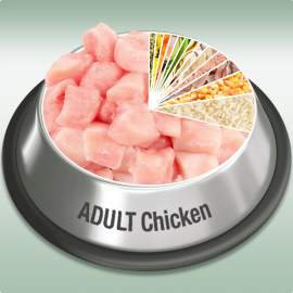 Platinum Adult Chicken